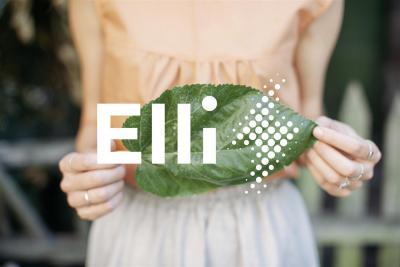 Elli: il nuovo fornitore di energia elettrica pulita by Volkswagen