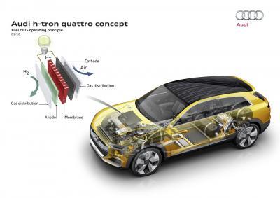 Auto elettriche? Per Audi il futuro sarà a idrogeno
