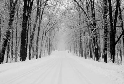Pneumatici invernali: quando vanno montati?
