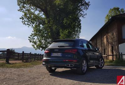 Audi Q5 55 TFSI e: evergreen